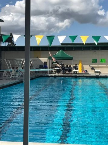 Varsity Captain Junior Anna Dupin does a back dive pike at the meet last Tuesday. Dupin has been diving for five and a half years and qualified for CCS.