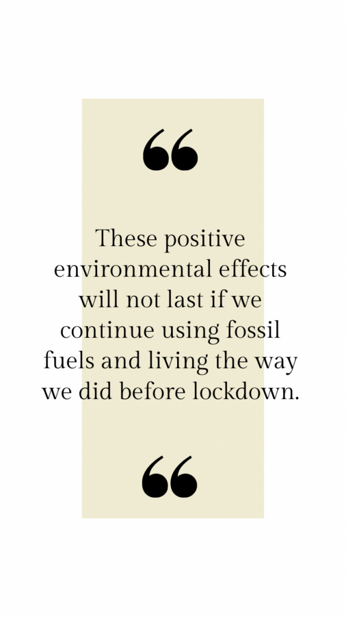 Maintaining positive environmental effects after lifting lockdown