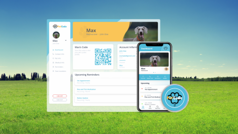 PetCode: from QR code to company