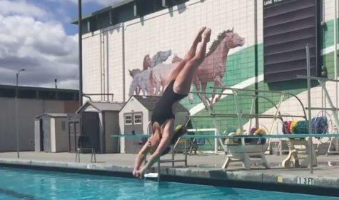 CCS Diving videos