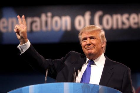 The Denome's Advocate: President-Elect Trump