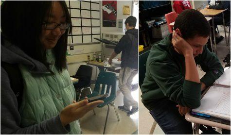 Students share memorable spring breaks