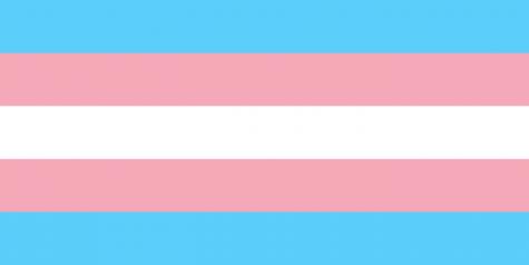 The Denome's Advocate: Trans Rights