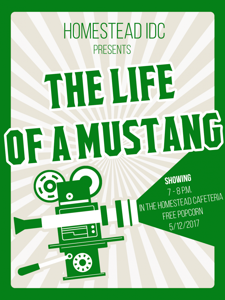 'The Life of a Mustang' will premiere on Friday, May 12, at 7 p.m. in the HHS Cafeteria. Image courtesy of Johnny Kobori