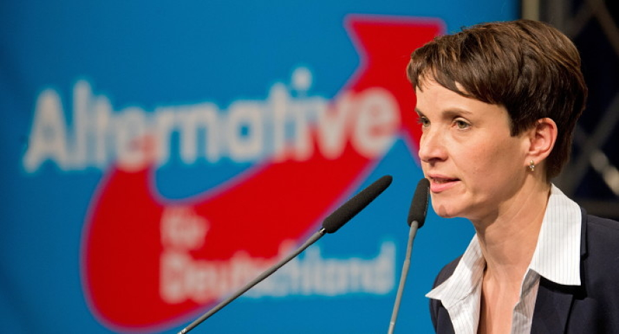 Frauke Petry, leader of the right-wing Alternative for Germany (AfD) party, has generally kept up an appearance of being more measured than her colleagues there, but some of her incendiary remarks are not as moderate as her demeanor suggests.