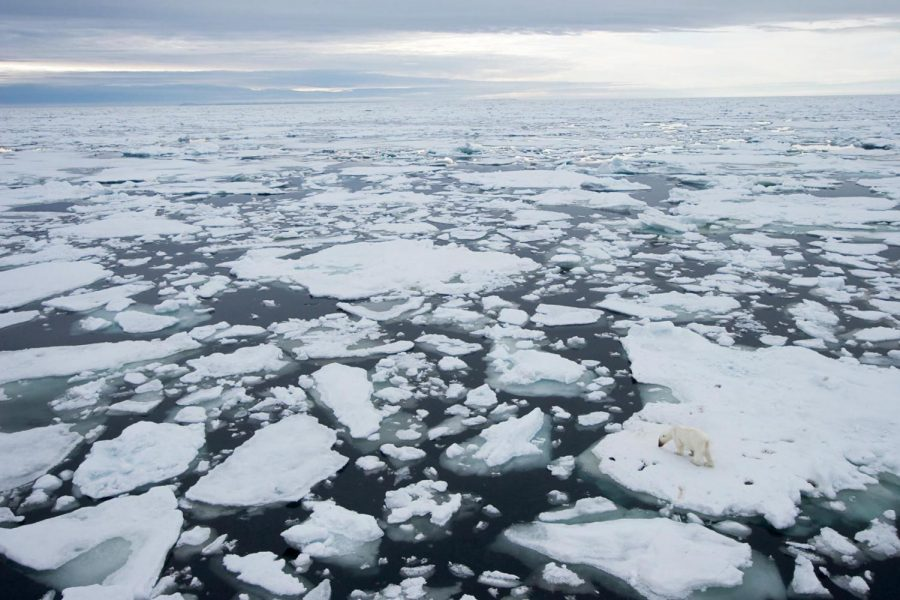 Carbon dioxide emissions from human activity contribute to the melting of the Arctic ice. Photo courtesy of National Geographic.