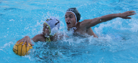 If you can't play nice, play water polo