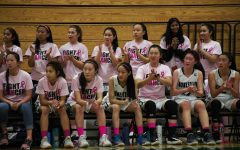 Pink Night raises support for breast cancer