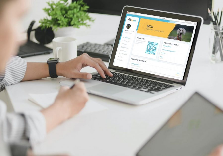 laptopmockupdashboard