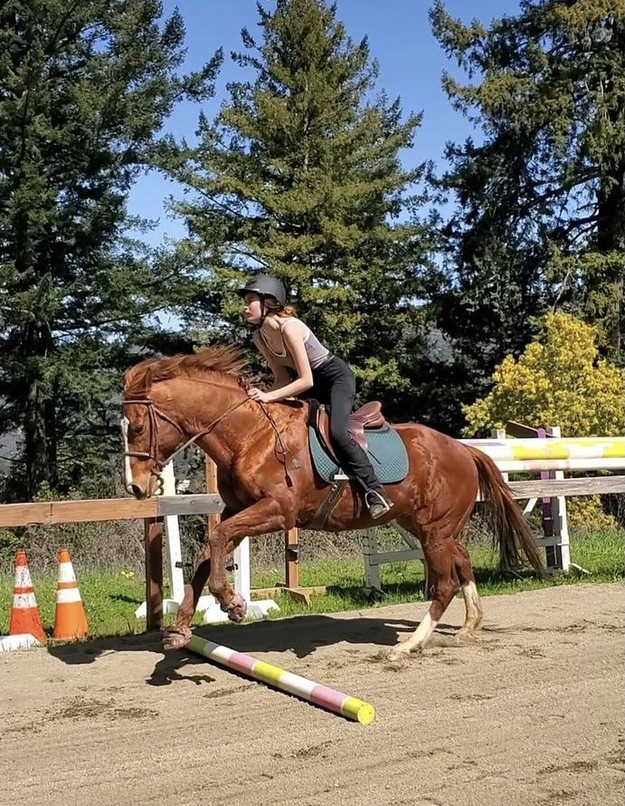 Sophomore Addison Heidemann said she feels horseback riding is both exhilarating and nerve-racking.