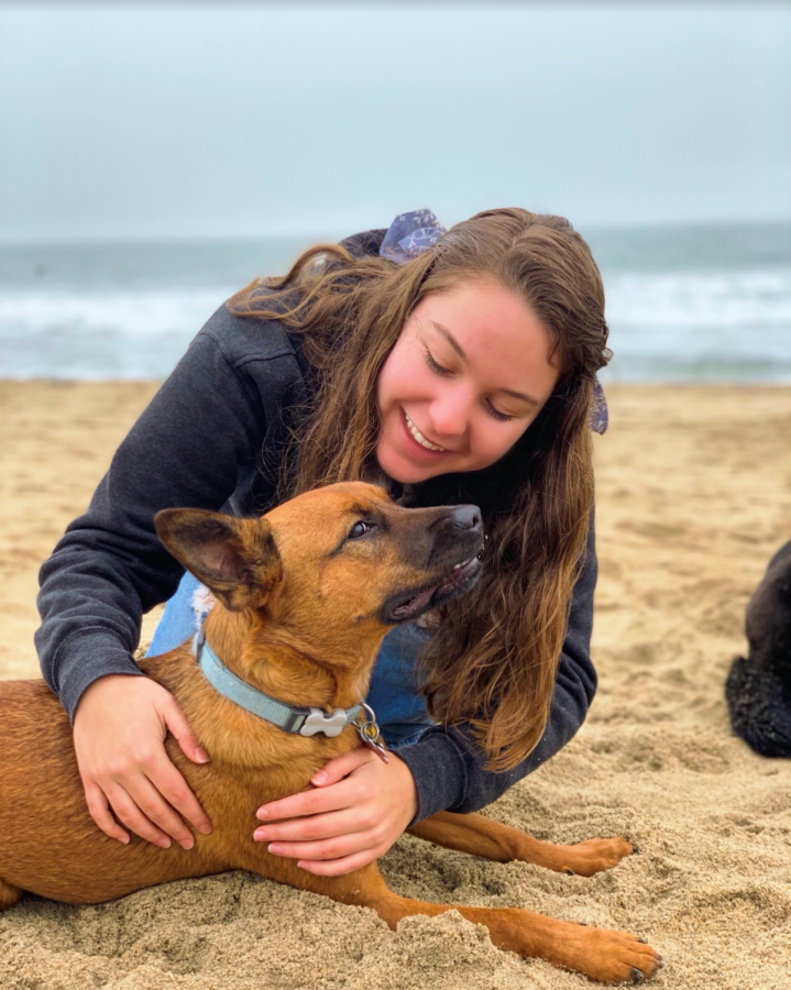 To the rescue: Marissa Young spending quality time with her foster dog.